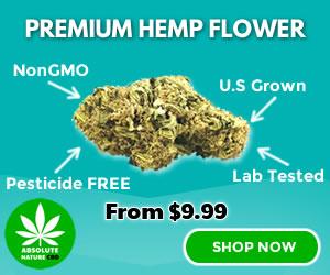 CBD-Hemp-Flower-Ad-300x250-2020
