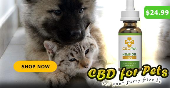 Buy CBD Pet